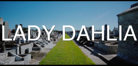 lady-dahlia-vddoa3
